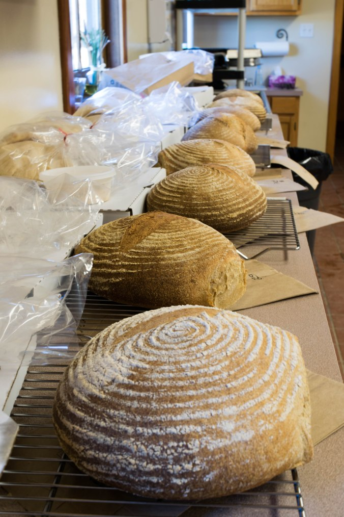 2017_01-bread-class-00010